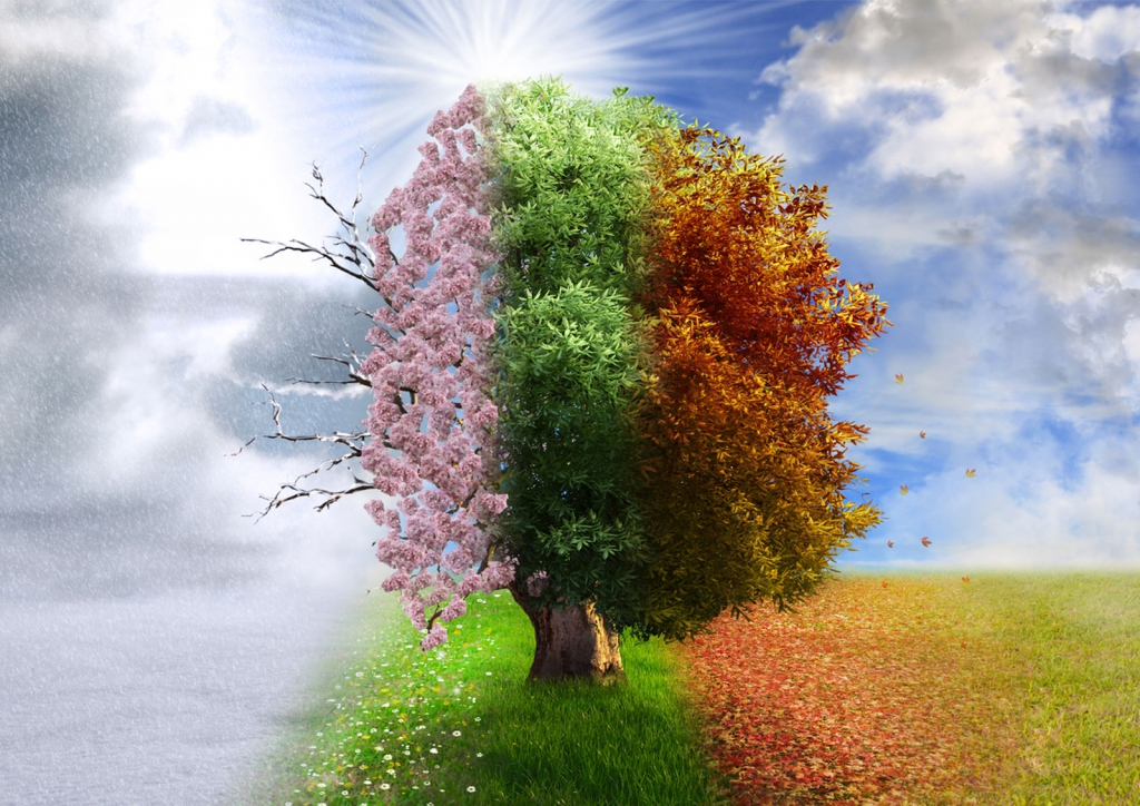 the cycle of seasons and life
